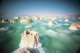 Мёртвое море — мёртвое?