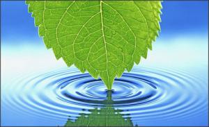 Как приготовить живую воду?